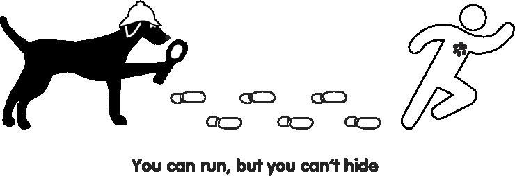 logotip v10